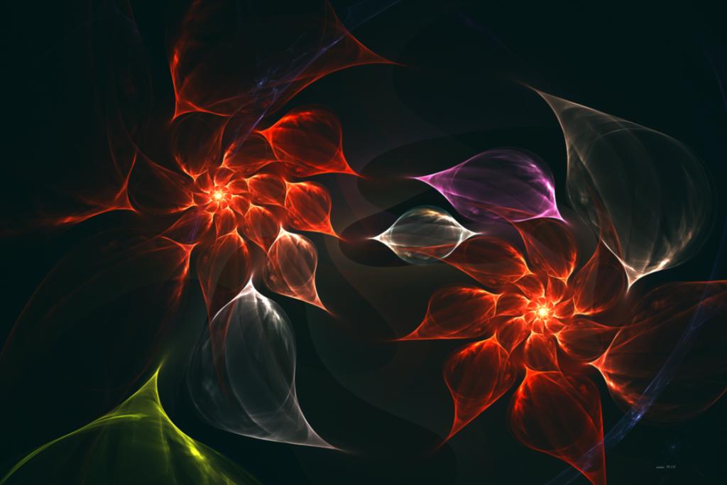 fractal flowers dance