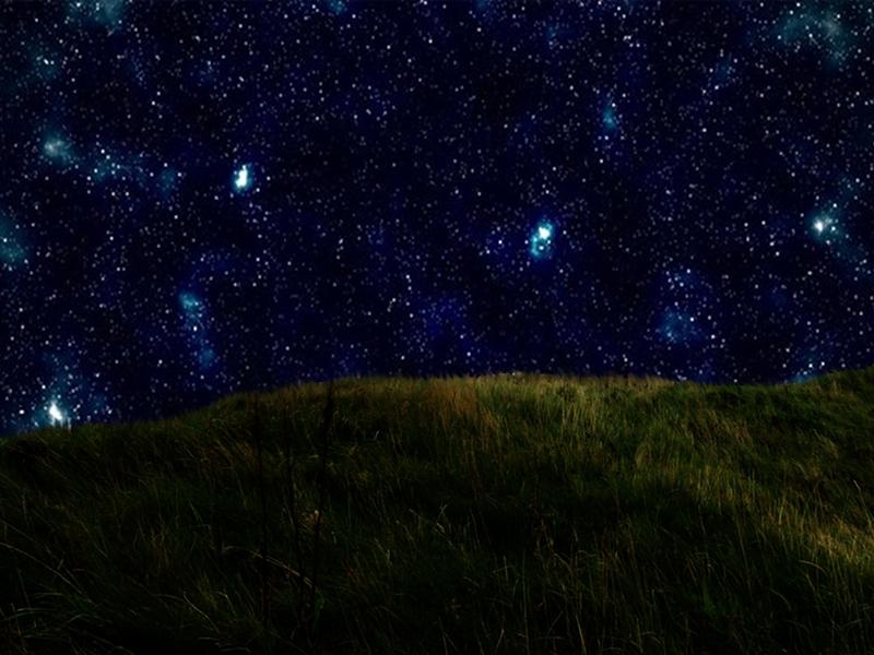 grass meadow & stars