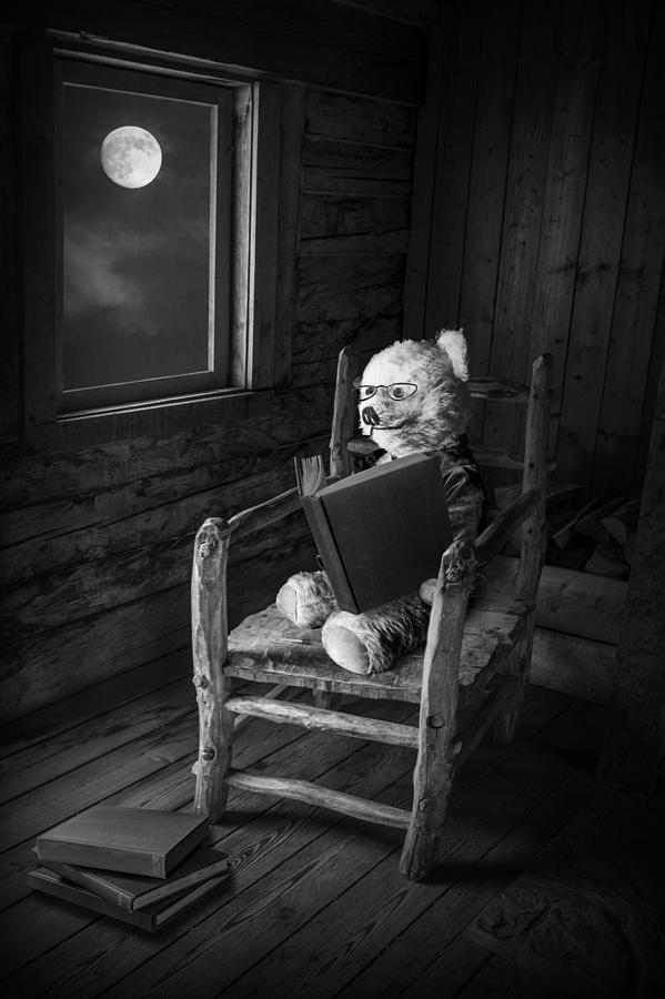 Teddy Bear reading by moonlight