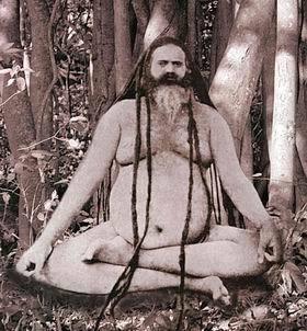 Nanga Baba Forest Yogi