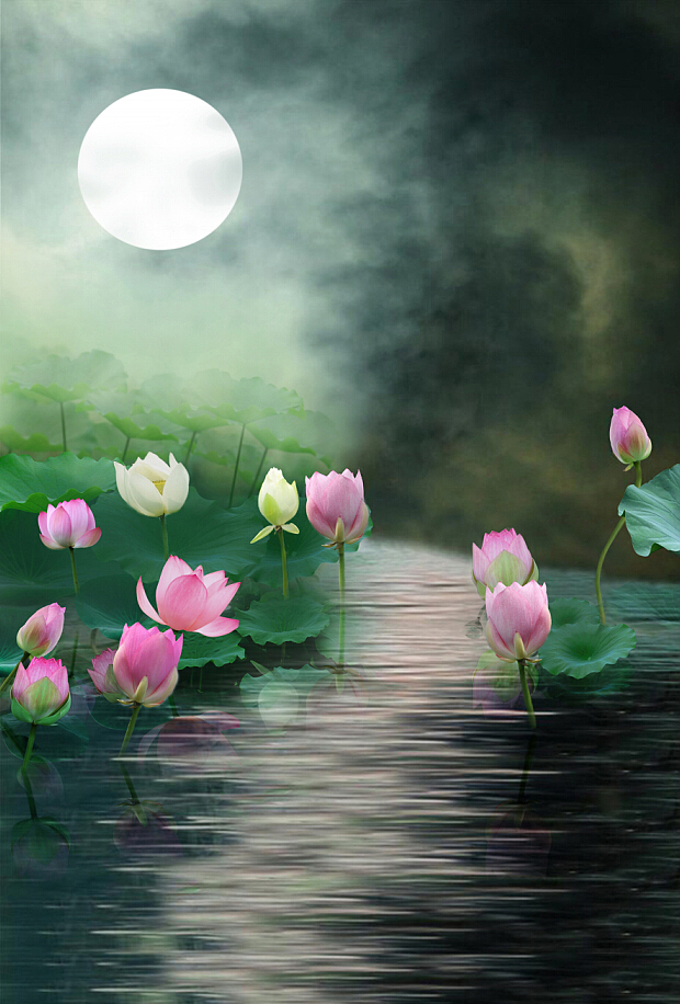 moon lotus mist