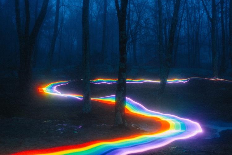 Rainbow path through forest