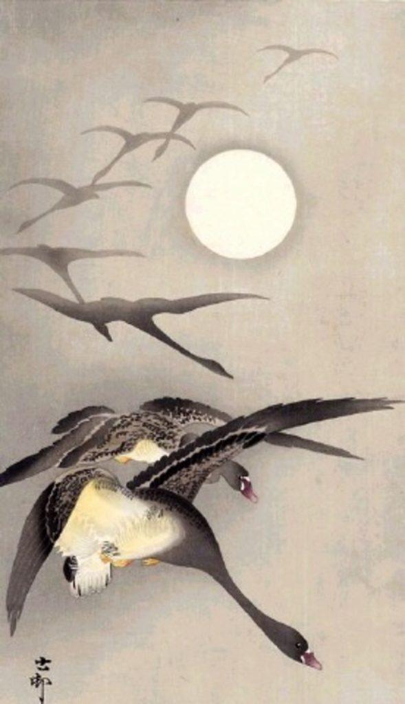 Geese flying across full moon