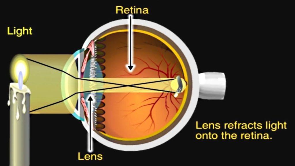eye mechanisms